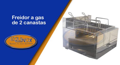 Equinox-Freidor a gas de 2 canastas -A